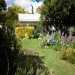 Tree change, 3 bedroom country cottage - Walcha Road thumb